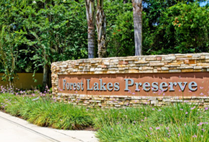 forest lake preserve homes port orange