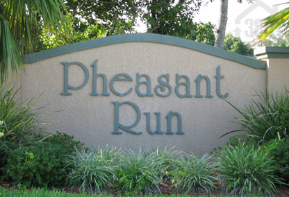pheasant run port orange neighborhood