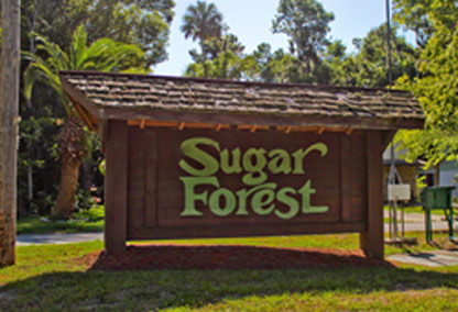sugar forest homes port orange